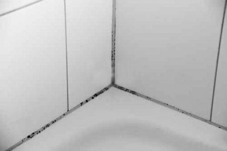 joints - salle de bains